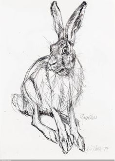 More art from Swiss animal artist extraordinaire, Fritz Hug. I love his stuff. Hare Painting, Animal Art, Sketches, Animal Drawings, Art Drawings, Art, Bunny Art, Animal Paintings, Bunny Sketches