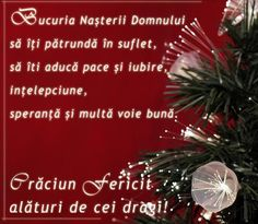 Craciun Fericit Photo by Merry Christmas Images, Merry Christmas Everyone, Merry Xmas, Christmas Time, Birthday Wishes, Happy Birthday, Wolf Colors, Biblical Verses, Winter Scenery