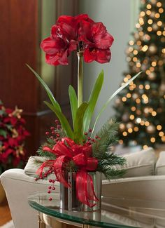 Our tall silk amaryllis is a classic holiday floral design and is always in bloom, unlike its short lived, real counterpart. Combined in a silver glazed ceramic cache pot are mixed pine, candy apple red berries and a red satin bow. Christmas Flowers, Christmas Porch, Winter Flowers, Diy Flowers, Christmas Holidays, Christmas Wreaths, Fresh Flowers, Flower Ideas, Xmas