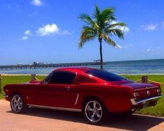 65 Mustang fastback