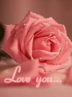 The perfect Love Rose Sparkle Animated GIF for your conversation. Discover and Share the best GIFs on Tenor. Roses Gif, Flowers Gif, Beautiful Rose Flowers, Beautiful Gif, Love Rose, Love You Gif, Love You Images, Imagenes Gift, Glowing Flowers