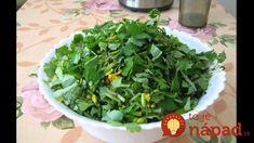 Gladioli, Lettuce, Korn, Spinach, Herbs, Vegetables, Medicine, Diet, Health
