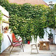 Une terrasse isolée dans un coin de verdure