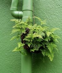 Indoor plant art. Urban and guerilla gardening. Upcycling plant containers. Moss graffiti, seed bombs and more... These 10 great DIY garden ideas approach greenery as life and art.