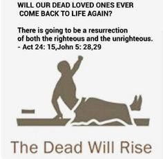 Act 24:15 / John 5:28, 29 ~ the dead will rise
