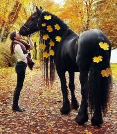 Gorgeous Black Autumn Frieian.
