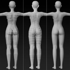 Buy High Quality Female Base Mesh by cghriggs on Hers is high quality model of Female Base Mesh. The model has perfect edge loop based topology with rational polyg. Maya Modeling, Modeling Tips, Girl Anatomy, Body Anatomy, 3d Model Character, Character Modeling, Anatomy Sculpture, Digital Art Beginner, Female Base