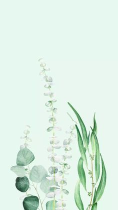 We have collected 100 spring wallpaper images to decorate your phone or desktop computer and get you into the spring mood and bring a smile to your face. Simple Phone Wallpapers, Pretty Phone Wallpaper, Cute Patterns Wallpaper, Iphone Background Wallpaper, Pretty Wallpapers, Aesthetic Iphone Wallpaper, Aesthetic Wallpapers, Iphone Backgrounds, Pretty Phone Backgrounds