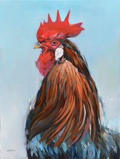 French rooster / 30 x 40 / oil on linen