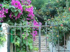 Mystery garden in Torremolinos, Costa del Sol, Spain