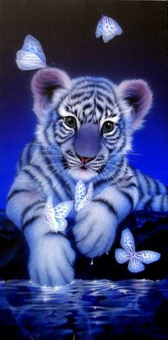 White baby tiger 2 - Painting Art by Kentaro Nishino - Nature Art & Wildlife Art - Airbrushed Wildlife Art. Tiger Pictures, Baby Animals Pictures, Cute Cat Wallpaper, Animal Wallpaper, Cute Animal Drawings, Cute Drawings, Beautiful Cats, Animals Beautiful, Big Cats Art