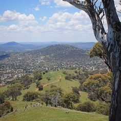 """""""Looking out to Canberra from Big Monks and the track we walked up. Tuggeranong Hill in the foreground; Mt Taylor to the left; and a tiny speck of the tower on Black Mountain waaaay off in the distance."""" Thanks to Instagrammer @paint_ing3 for sharing this super shot and tagging #visitcanberra"""