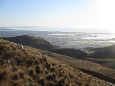Let it Roll: Morning trail or morning wave? Mountain Biking, Trail, Waves, Mountains, Nature, Blog, Naturaleza, Blogging, Ocean Waves