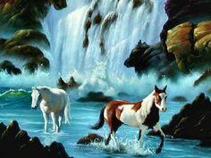 Horses in the Wild by Jim Warren