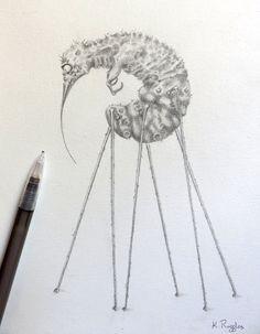 Original fantasy pencil drawing creature drawing by DrawingInDark