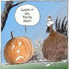 It's time for Thanksgiving jokes. Here is the collection of some funny thanksgiving pictures. It's also the time for Thanksgiving cards invitations so maybe Funny Thanksgiving Pictures, Thanksgiving Jokes, Thanksgiving Greetings, Autumn Pictures, Thanksgiving Blessings, Nature Pictures, Halloween Cartoons, Happy Halloween, Halloween Humor