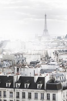 / foggy Paris /