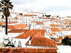 Trip Advices - Portugal | Carnet de voyage - Portugal - PROJET PASTEL