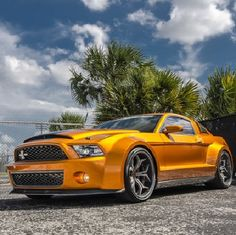 Awesome! Ford #Mustang Shelby Super Snake GT500. #sexy #spon