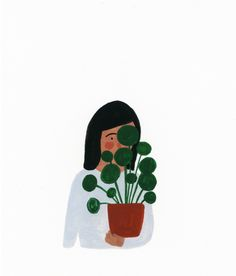 Kate Pugsley / Pilea