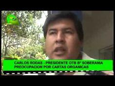 ELECCIÓN DE SUB ALCALDE POR VOTO POPULAR EN LA CARTA ORGÁNICA (02-10-15)