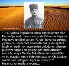 Fahrettin Paşa, Çöl Kaplanı