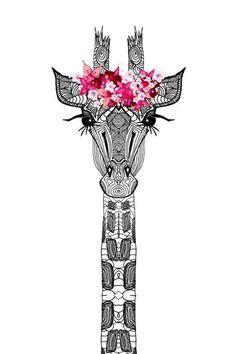 hipster giraffe - Google Search