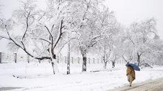 La neige fait au moins 54 morts