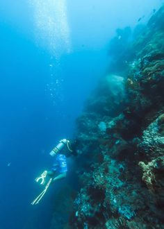 person diving underwater photo – Free Ocean Image on Unsplash Underwater Photos, 2 Photos, Gopro, Diving, Ocean, River, Mountains, World, Photography