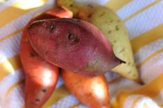 Purple, red, orange and white heirloom sweet potatoes. (The insides were even more jewel-like!)