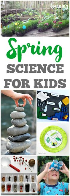 Spring Science Ideas for Kids! Learn about science with the little ones with these fun spring science ideas for kids!Learn about science with the little ones with these fun spring science ideas for kids! Spring Activities, Science Activities, Preschool Activities, Science Ideas, Science Resources, Stem Projects, Science Projects, Projects For Kids, Crafts For Kids