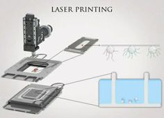 www.buildbytes.com | How DNA synthesis will get democratized by means of laser 3D Printing.