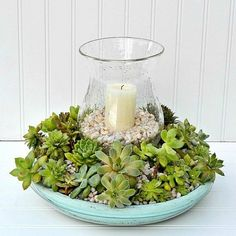 Use a terra cotta saucer as the base for this beautiful succulent centerpiece.