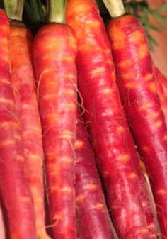 Organic Carrot Atomic Red Heirloom Vegetable Seeds - so pretty!