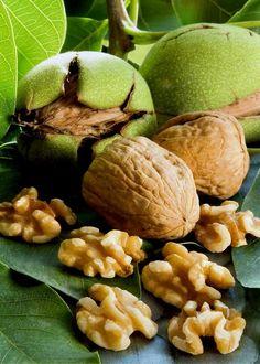 Cevizdeki Mucize    Ceviz ağacı, yaprağı, kabuğu, meyveleri her türlü yararlandığımız bir bitkidir.    Ağacından elde edilen odun mobilyacılıkta, yaprakları, meyveleri ve meyvelerinden çıkarılan yağ; ilaç, boya maddesi ve besin olarak kullanılır.    İçeriğinde, ceviz yaprakları ve yeşil kabukları, tanen, uçucu yağ ve juglonisimli acı bir madde içermektedir. Ceviz içi, şeker, selüloz ve bol miktarda yağ ihtiva eder.