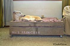 No. 1 Princess -- Tales and Tails