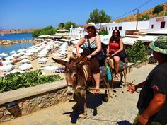 IRENE K. - USA-ΕΚΠΡΟΣΩΠΟΣ ΤΗΣ ΕΛΛΑΔΑΣ:Amazing ride in Lindos, Rhodes... The donkey rides in Greece beat taking the NYC subway train any day! ;)