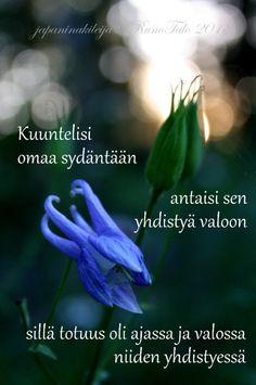 Runotalon voimakortti Kuuntelisi omaa sydäntään antaisi sen yhdistyä valoon