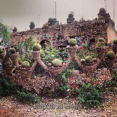 Casa de piedra-Jalpa Zacatecas Mexico