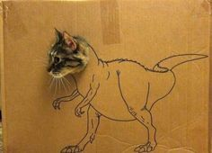 Beware a new army of cat-raptors have been bio engineered on New Guinea and are carnivorous and fluffy