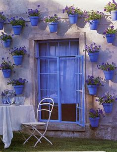 #window #purple #stunning #nature #flowers