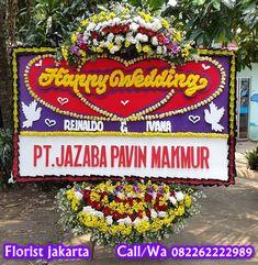 Toko Bunga Jakarta | Hub Call/Wa 082262222989 Ficus, Aster, Jakarta, Christmas Ornaments, Holiday Decor, Birthday, Wedding, Medium, Casamento