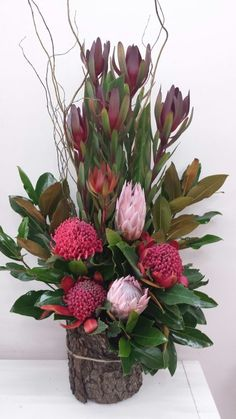 Blackwood Florists Corporate Flowers can enhance your work environment with a stunning design, or a simple bunch delivered to any suburb of Adelaide. Tropical Flowers, Tropical Floral Arrangements, Large Flower Arrangements, Flower Arrangement Designs, Artificial Floral Arrangements, Orchid Arrangements, Artificial Flowers, Home Flowers, Beautiful Flowers