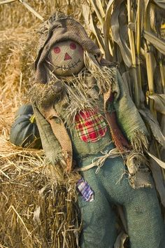 I love the look of this scarecrow. I plan make him and his wife for my front porch this Halloween, with an extended visit until Thanksgiving. Holidays Halloween, Halloween Crafts, Halloween Decorations, Halloween Ideas, Halloween Party, Mabon, Make A Scarecrow, Scarecrow Ideas, Scarecrow Doll