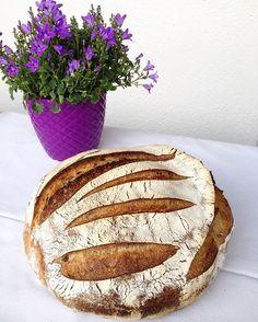 Oyster Shell Sourdough Bread via @feedfeed on https://thefeedfeed.com/fusununekmegi/oyster-shell-sourdough-bread