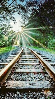 Photography Discover Sun flare on the train tracks Blur Photo Background Studio Background Images Black Background Images Picsart Background Landscape Photography Nature Photography Scenary Photography Lifestyle Photography Train Pictures Studio Background Images, Black Background Images, Photo Background Images, Background For Photography, Photo Backgrounds, Landscape Photography, Nature Photography, Scenary Photography, Lifestyle Photography