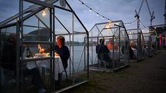 Image 9 of 14 from gallery of Serres Séparées Proposes a Socially-Distant Dining Experience in Amsterdam. © Willem Velthoven for Mediamatic Amsterdam Christian Le Squer, Greenhouse Restaurant, Outdoor Restaurant, Amsterdam Restaurant, Large Greenhouse, Amsterdam Art, Public Space Design, Strange Photos, Crazy Photos