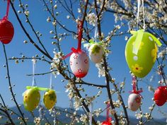 Albero di Pasqua fai da te (Foto 8/41) | Tempo Libero PourFemme