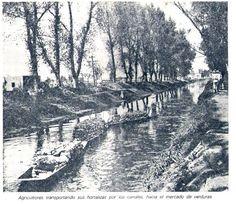El pueblo de Mixcoac y el río con el mismo nombre que atravesaba parte de la demarcación.