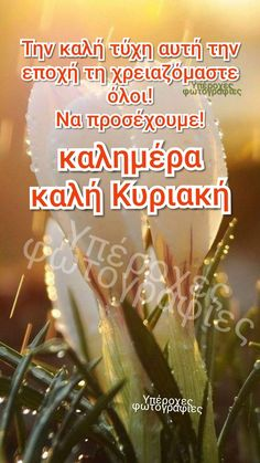 Greek Quotes, Good Morning, Wish, Greeting Cards, Friends, Crafts, Buen Dia, Amigos, Manualidades